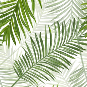 Green Palm Leaves wall decor